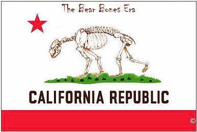 bearbonesflag.jpg